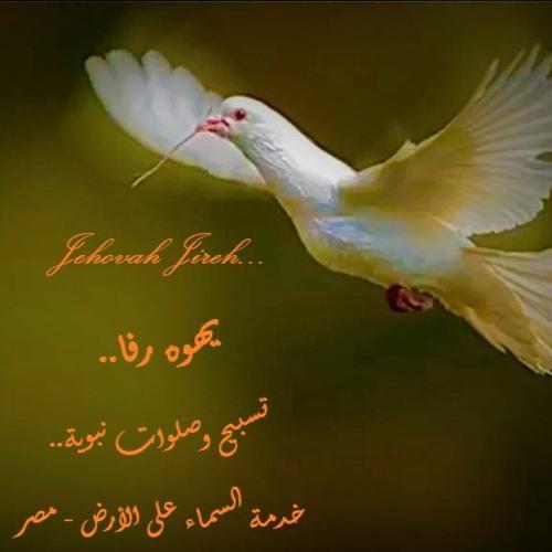 يهوه رفا - حبيبك يحيا آمنًا - تسبيح نبوي - خدمة السماء على الأرض - مصر - د. ثروت ماهر