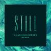 Still (Charming Horses Remix)