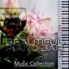 Erotic Music (Special Occasions)