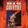 In A Big Country (Radio Edit)