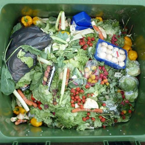 Stooszyt: Den Foodwaste aus dem Container nehmen