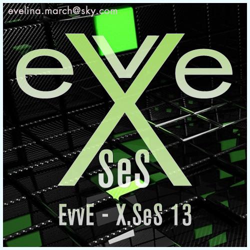 X.SeS 13