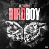 Birdboy Mp3