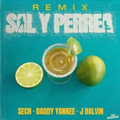 Sech, Daddy Yankee, J Balvin - Sal y Perrea (Remix) - Intro Edit 2021 💥