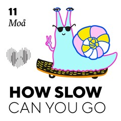 How Slow Can You Go #11 - Moå