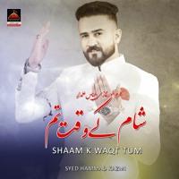 Sham K Waqt Tum  - Syed Hammad Kazmi   Qasida Mola Abbas A.S - New Qasida 2021