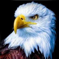 رؤية النسور - صلاة نبوية - د. ثروت ماهر - خدمة السماء على الأرض - مصر - مايو 2021