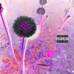 Purpose Remix Ft. Heri Banks (Prod By. Hoop)