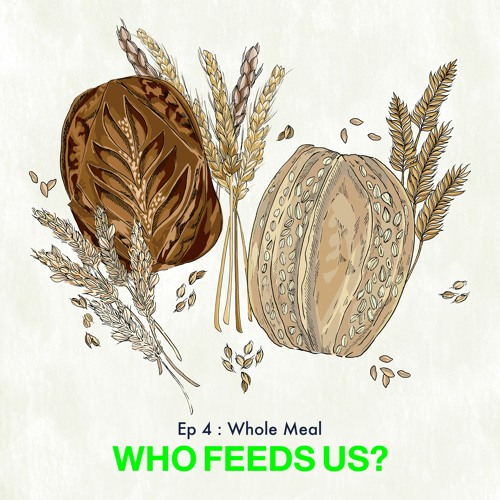 """""""Who feeds us?"""" Episode 4: Whole meal"""
