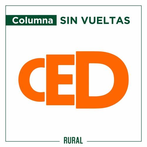 Sin Vueltas -columna- CED (lunes 13/09)