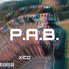 P.A.B. - XiCO