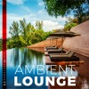 Download Ambient Lounge - Wonderful Instrumental Background Music For Videos (Download MP3) Mp3