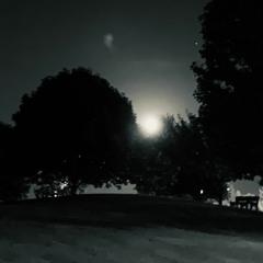 Black Moon - Wilco Cover