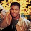 No. 1 Fan (Album Version)