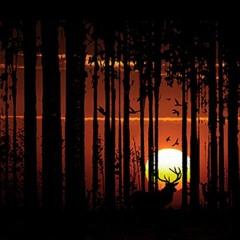 deer my friend