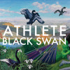 Black Swan Song (Acoustic - Album Version CD2)