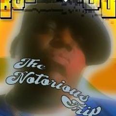 Bobby Ft Piou - Notorious Trip
