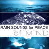 Rain Sounds for Peace of Mind