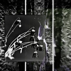 Decay (Prod. Yandel Avant)