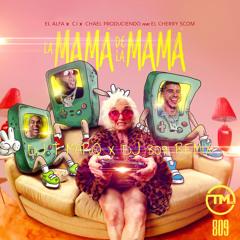 La Mamá de la Mamá (DJ T Marq x DJ 809 Remix)