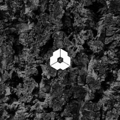 DNC LIM 097 - Zemög - Primal