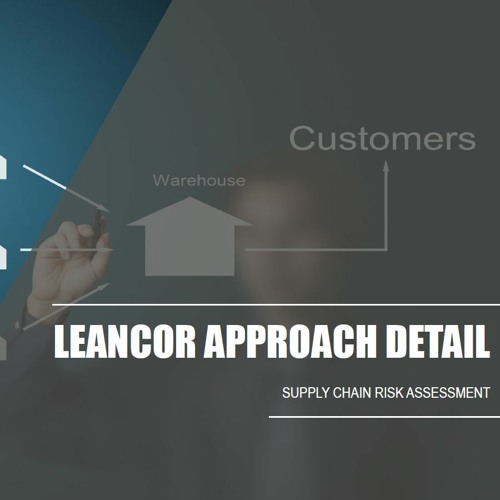 Supply Chain Flexibility and Risk Assessment