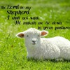Download NLH#04.26.20 The Lord Is My Shepherd PT 2 By Ava Green-Cameron Mp3