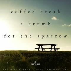 Boson Spin - A crumb for the sparrow [naviarhaiku 353]