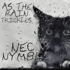 Nec Nymbl - As The Rain Trickles