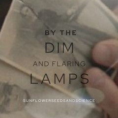 XF: By the Dim and Flaring Lamps - Chapter 2 by sunflowerseedsandscience - MA