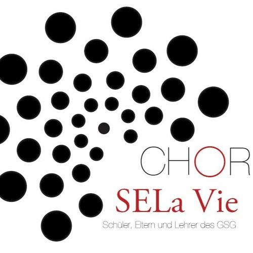 SELaVie Chor live | GSG Pulheim