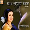 Download Na Chahile Jare Paoa Jay Mp3