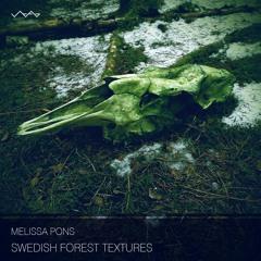 Swedish Forest Textures - rain unfolds heavy