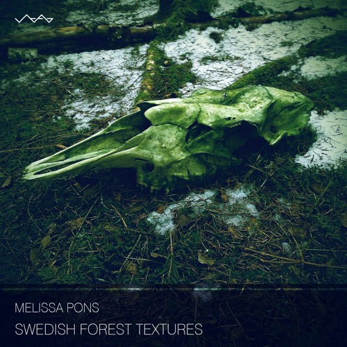 Swedish Forest Textures - spring songs