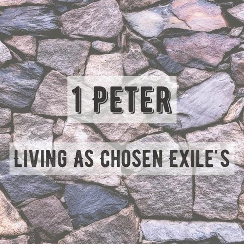 1 Peter Sermon Series (Hawick Baptist Church)