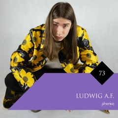 Phonica Mix Series 73: Ludwig A.F.