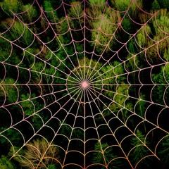 Spiderwebs (Land of the ZED #3) - Uziel   Stonerjazz   Tea Are Sea