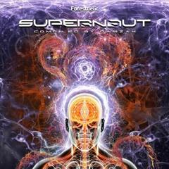 Scheming Apes - VA Supernaut - Forestdelic Records 2020