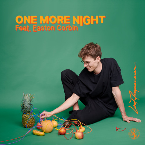 Lost Frequencies One More Night