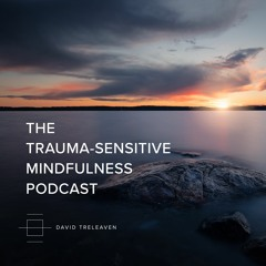 Episode 1 | Mindfulness, Trauma, and Contemporary Buddhism