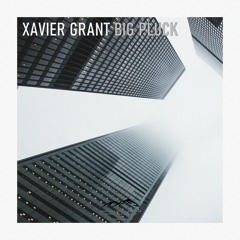 PREMIERE: Xavier Grant - Big Pluck (& My Mother Say Remix) [Neo Apparatus Records]