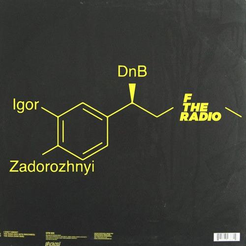 Igor Zadorozhnyi 003