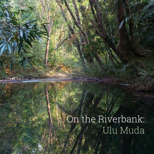 'On the Riverbank: Ulu Muda' - Recorded in Malaysia - Album Sample