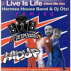 El Desperado & HIDUP - Live is Life (remisq)