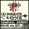 Download 'PEACE+LOVE' live stream - #Newskool session 17/08/20 Mp3