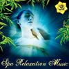 Vistas: Soothing Piano Music for Spa (feat. Ben Leinbach)