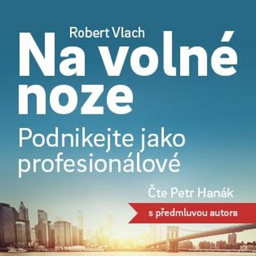 Robert Vlach   Na volné noze: Podnikejte jako profesionálové   Melvil.cz