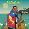 Download Burna Boy - Wonderful (Sax Cover) Mp3