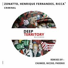 Zonatto, Henrique Fernandes, Ricca  - Criminal (Phoenix Remix)
