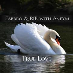 Fabbro & R.I.B with Aneym - True Love (Radio Edit)